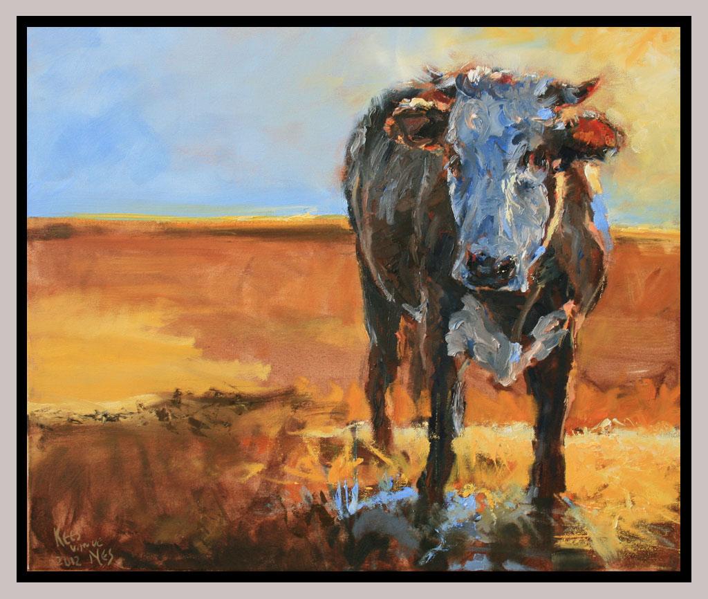 Koe in ochtendlicht 60x50 olie